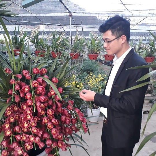 vườn lan tiền tỷ